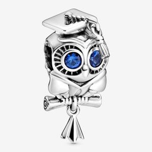 📿Wise Owl Graduation Charm